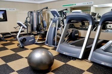Hotel Holiday Inn Plainview-Long Island: Salle de sport PLAINVIEW (NY)