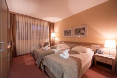 Hotel Breza: Twin Room PODCETRTEK