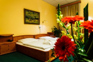 Hotel Wellness And Treatment Ghc: Standard Room PRAGA