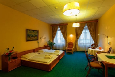 Hotel Wellness And Treatment Ghc: Standard Room PRAGUE