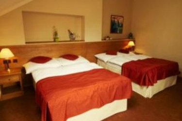 Hotel Rott: Chambre PRAGUE