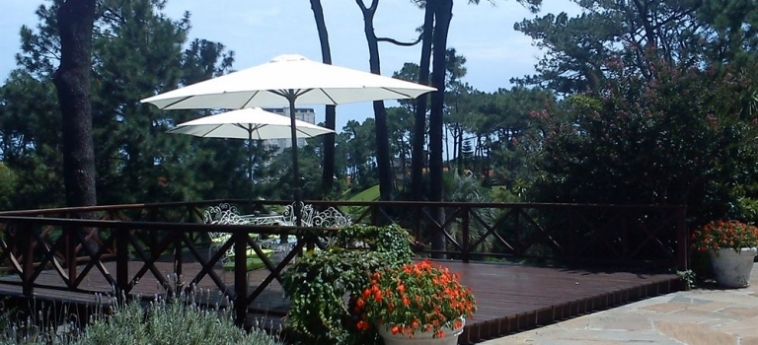 Josephine Boutique Hotel: Roof Garden PUNTA DEL ESTE