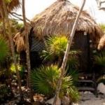 Hotel Papaya Playa