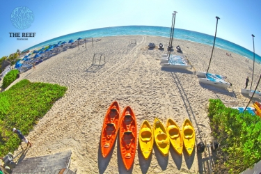 Hotel The Reef Playacar All Inclusive: Activité RIVIERA MAYA