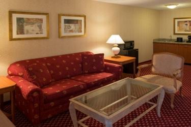 Edward Hotel Chicago: Living Room ROSEMONT (IL)