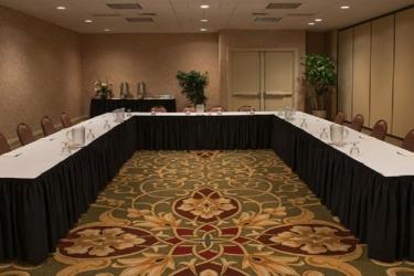 Edward Hotel Chicago: Struttura per riunioni ROSEMONT (IL)