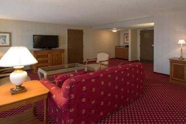 Edward Hotel Chicago: Zona giorno ROSEMONT (IL)