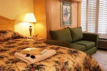 Hotel Grand Plaza Beachfront: Chambre SAINT PETE BEACH (FL)