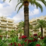 Hotel Ona Club Novelty