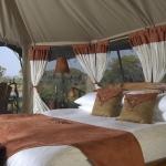 ELEPHANT BEDROOM CAMP 5 Sterne