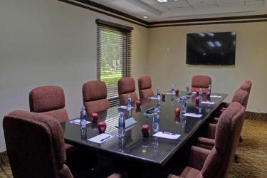 Hotel Hampton Inn & Suites By Hilton San Jose-Airport: Konferenzraum SAN JOSÉ - ALAJUELA