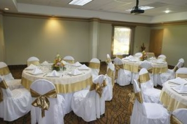 Hotel Hampton Inn & Suites By Hilton San Jose-Airport: Konferenzsaal SAN JOSÉ - ALAJUELA