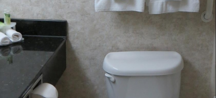 Hotel Holiday Inn & Conference Centre: Bagno SARNIA - ONTARIO