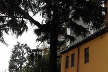 Hotel Residence Il Pino: Amphitheater SARONNO - VARESE