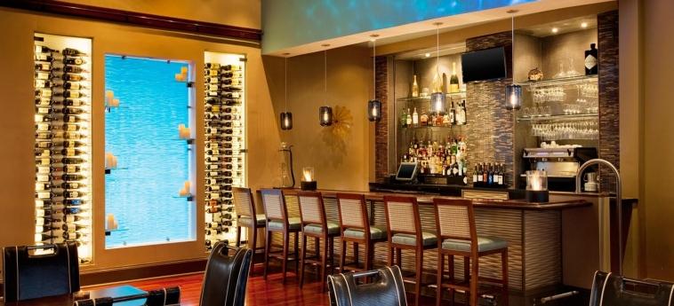 Hotel The Westin Savannah Harbor Golf Resort & Spa : Bar SAVANNAH (GA)