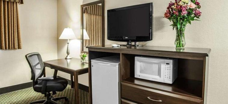 Hotel Quality Inn & Suites Seattle Center: Camera degli ospiti SEATTLE (WA)