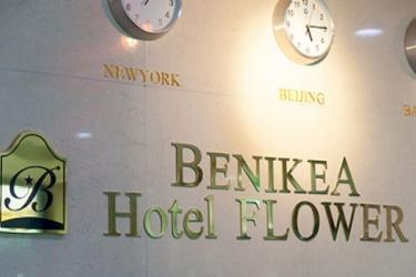 Benikea Hotel Flower: Piscina Exterior SEOUL