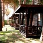 Hotel Flora Garden Beach Club