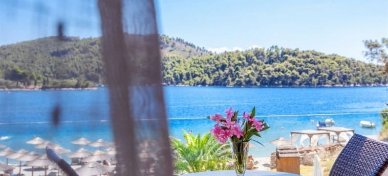 Hotel Blue Green Bay: Aussicht SKOPELOS