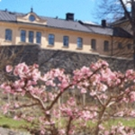 Hotel Langholmen