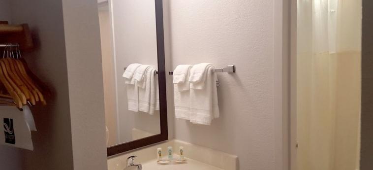 Hotel Quality Inn Syracuse Carrier Circle: Bathroom SYRACUSE (NY)