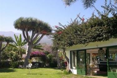 Elegance Miramar Hotel: Roof Garden TENERIFE - ILES CANARIES