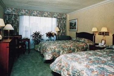 Hotel Sheraton Centre Toronto: Habitación TORONTO