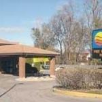 Hotel Comfort Inn East - Scarborough