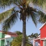Hotel Club Amigo Costa Sur