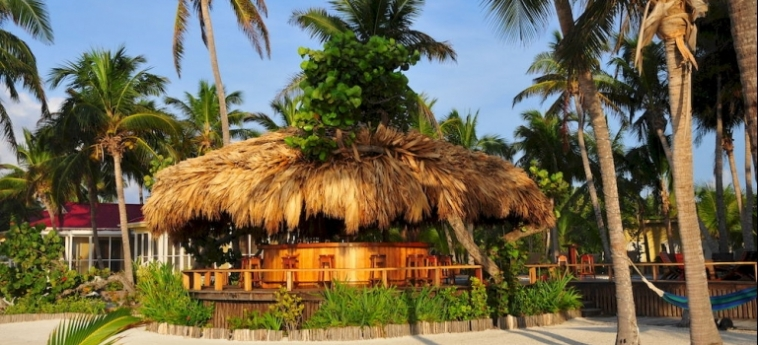 Hotel Turneffe Island Resort: Komfort Zimmer  TURNEFFE ISLANDS