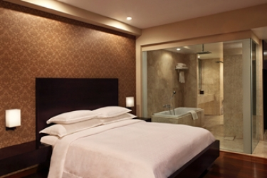 Hotel Radisson Blu Udaipur Resort & Spa: Cena in camera UDAIPUR
