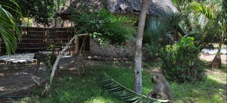 Hotel Afrika Pearl & Spa: Imperial Suite UKUNDA