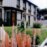 Hotel Hostal Del Bosque