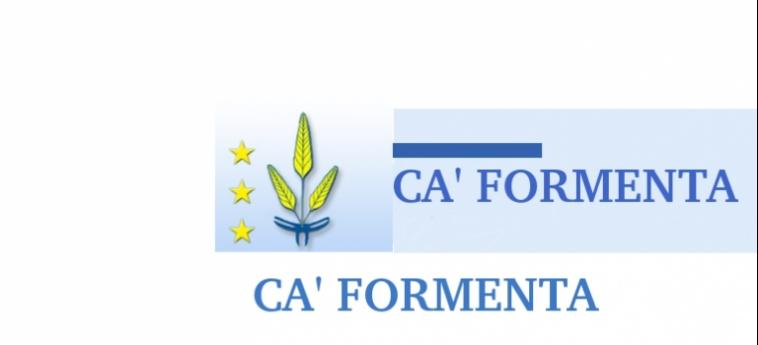 Hotel Ca' Formenta: Logo VENEZIA