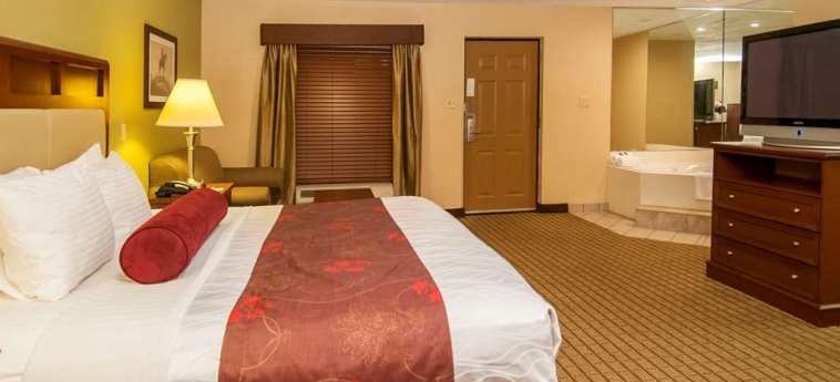 Hotel Best Western Vicksburg: Camera degli ospiti VICKSBURG (MS)