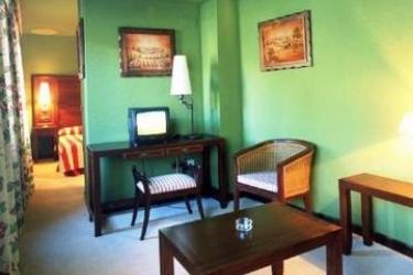 Hotel Husa Urogallo: Habitación VIELHA