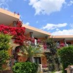 Hotel Palm Village