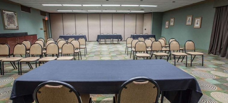 Hotel Quality Inn & Suites: Sala Reuniones WINSTON SALEM (NC)