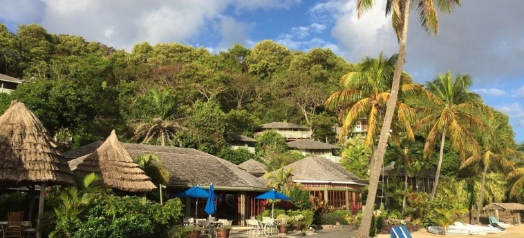 Hotel Young Island Resort: Foret de Pins YOUNG ISLAND