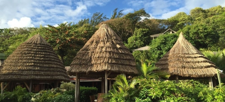 Hotel Young Island Resort: Room - Club Single YOUNG ISLAND