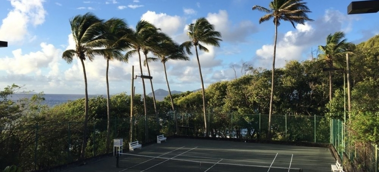 Hotel Young Island Resort: Tennis Court YOUNG ISLAND
