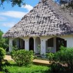 Hotel Ras Michamvi Beach Resort