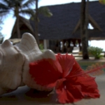 Hotel Sahari Zanzibar