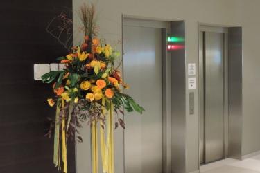Hotel Holiday Inn Express Affoltern Am Albis: Hallway ZURICH